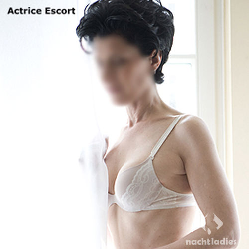bear cheap escorts hamburg