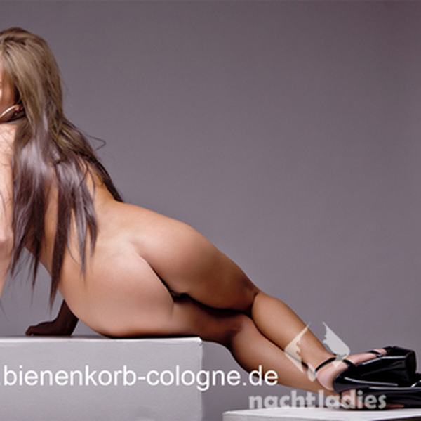 ladies.d erotische massage köln privat