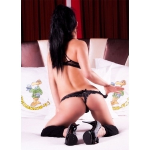 swingerclubs hamburg escort in berlin