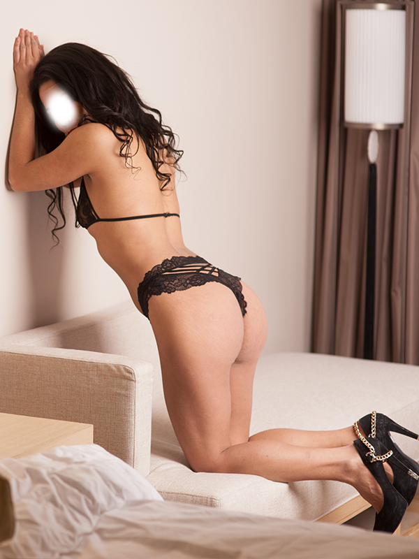 titten elite amsterdam escorts