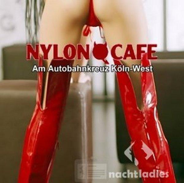 nyloncafe köln sex im arsch
